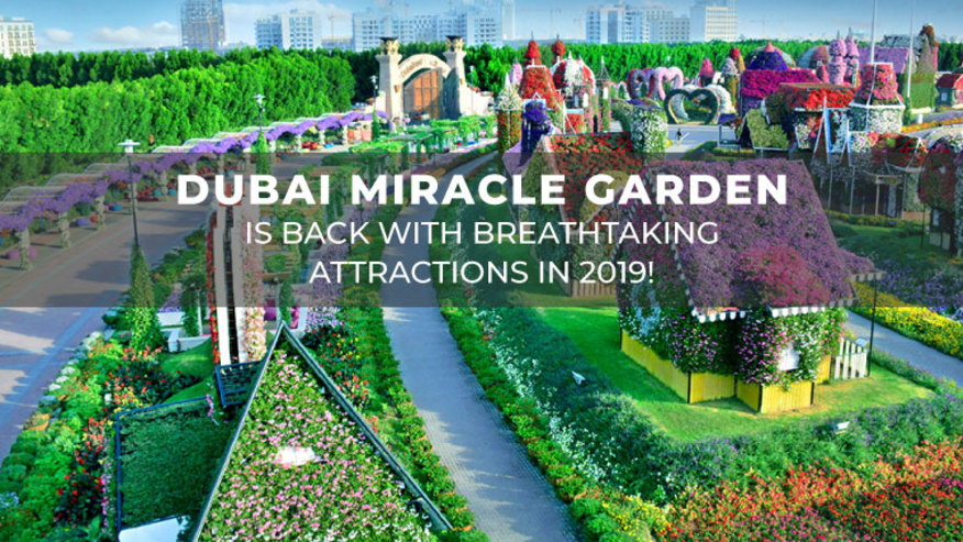The Dubai Miracle Garden is back with stunning attractions in 2019