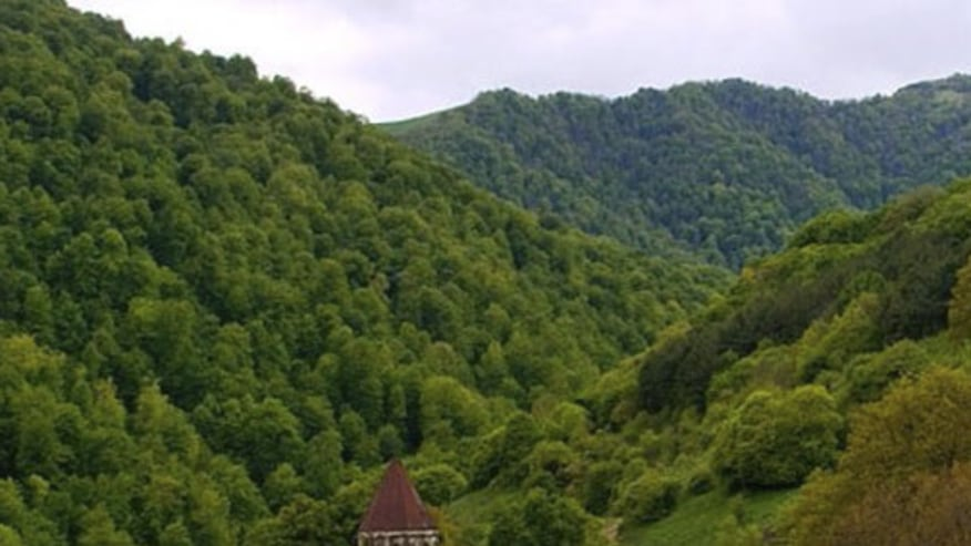 Continue your drive to Dilijan national park (little Switzerland of Armenia)