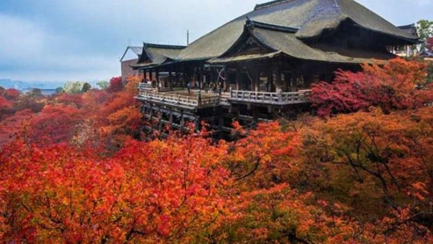 Visit cultural heritage hotspots at Kyōto