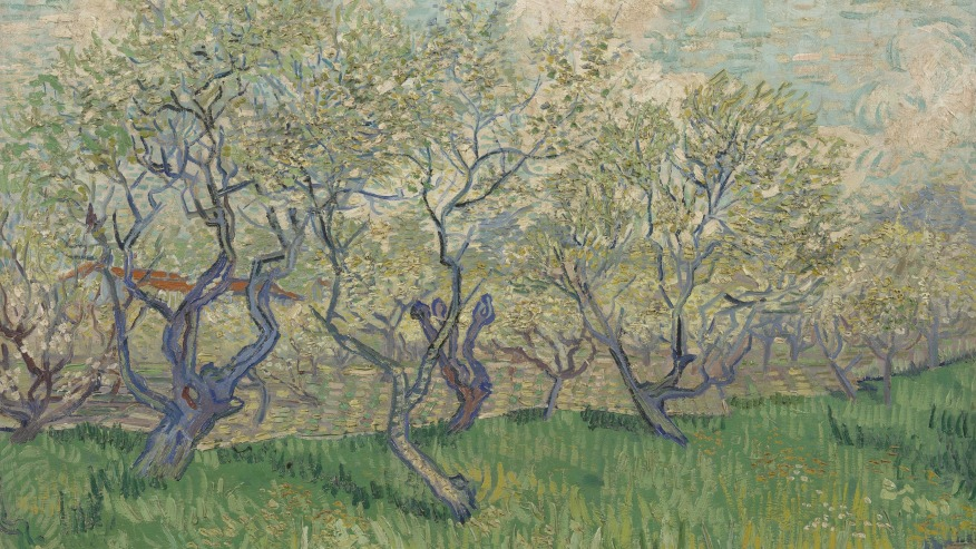 Savour the masterpieces of Van Gogh