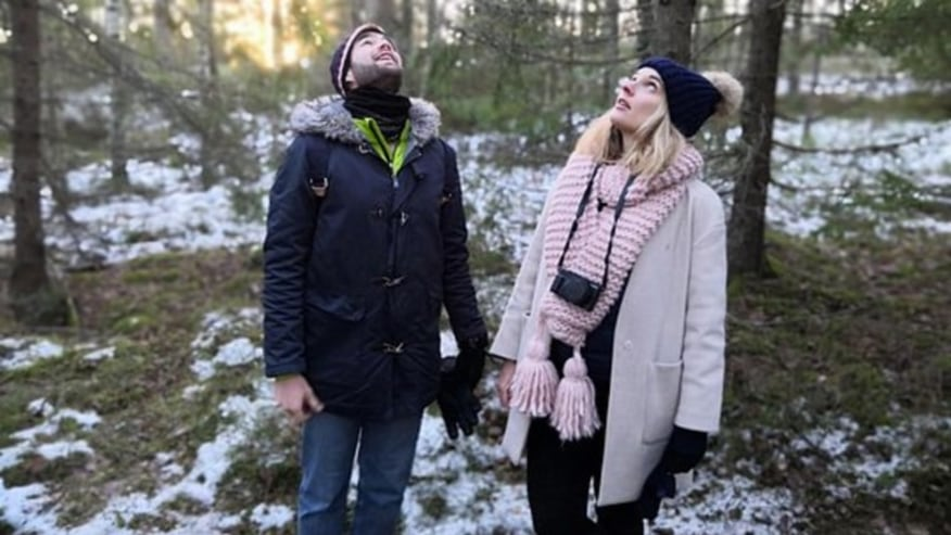 Experience Light snowfall