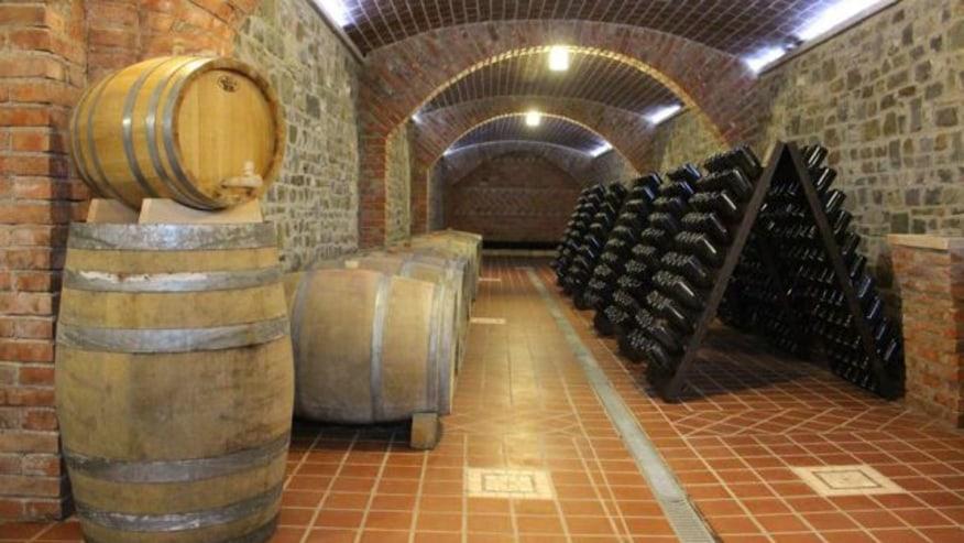 Say Cheers to Albanian Wine