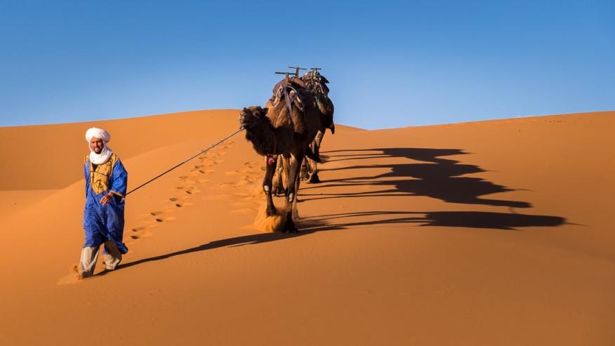 Arrival at desert
