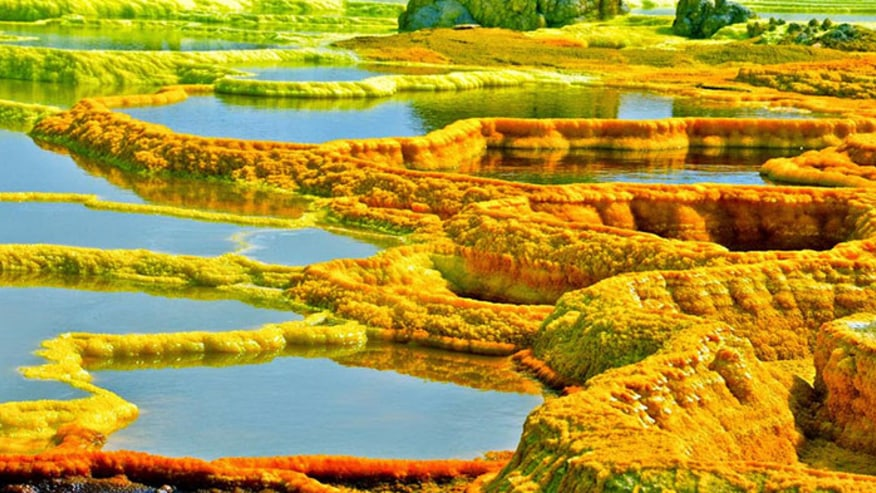 Hydrothermal Field