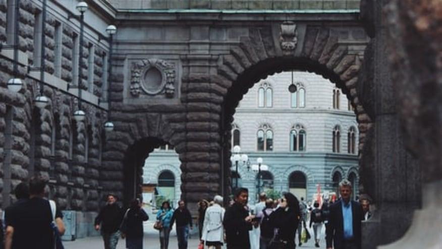 The  Swedish Riksdag,