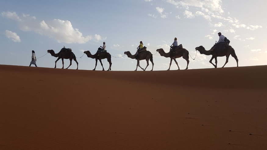 Delight with Sand Dunes, Berber Villages & Camel Rides