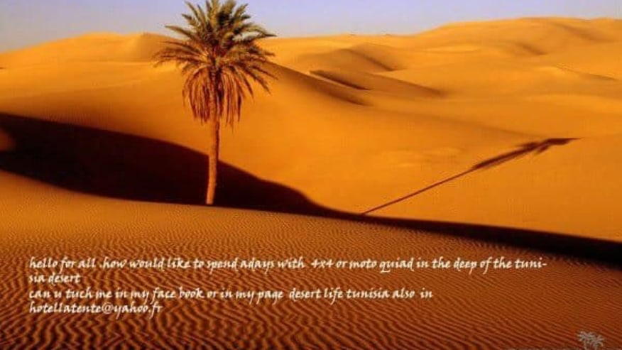 vast Sahara Desert
