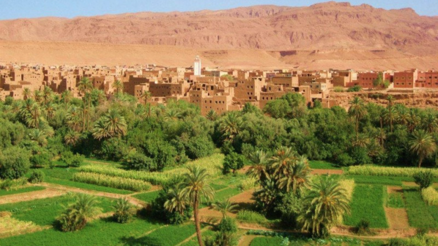 Trekking Advice in Morocco!