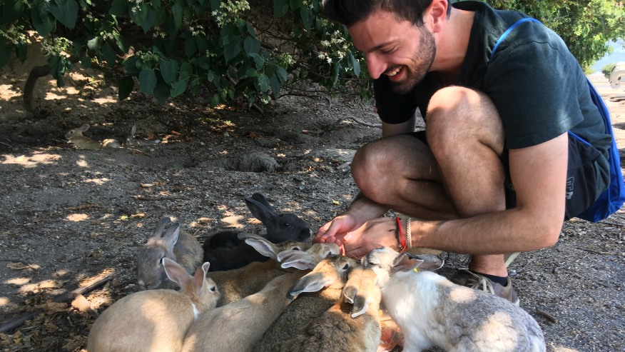 Meet Friendly Bunnies at Japanese Island Okunoshima