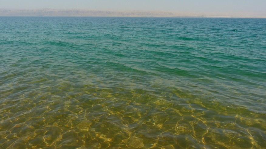 Swim in the hypersaline water