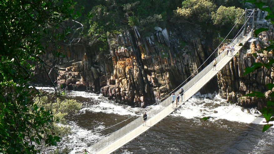 Traverse in the Majestic Beauty of the Garden Route