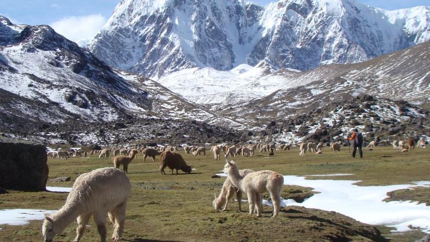 Ausangate Trek Cusco-Peru