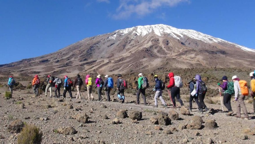 Climbing Expedition Machame Route