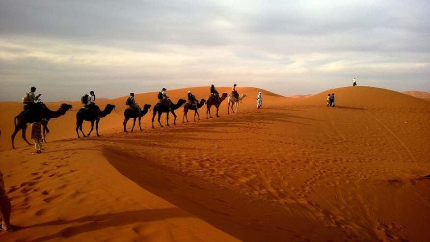 Uncover natural and man-made wonders of the Sahara