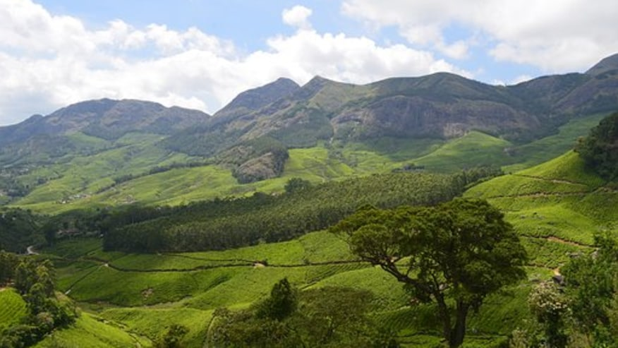 Discover the Natural Beauties of South India
