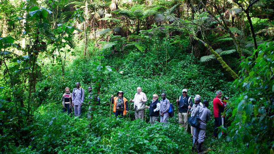 Benefit from a Great Adventure in East Africa