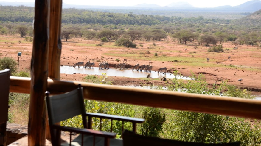 Kilanguni Serena Game Lodge; standard Luxury Lodge Wildlife Tours