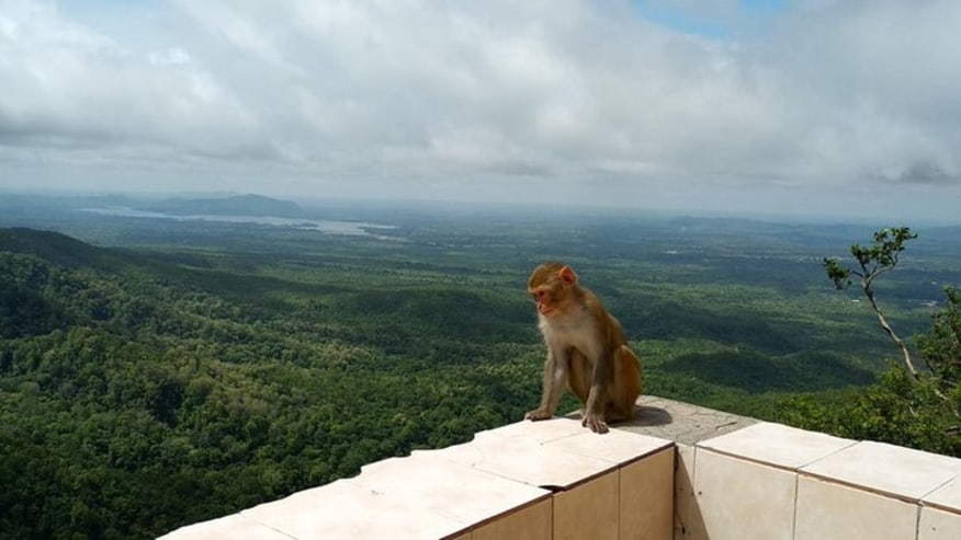 View from Mt Popa