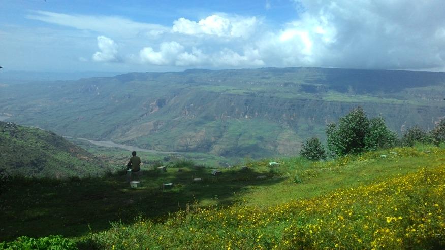 ONLY ETHIOPIA