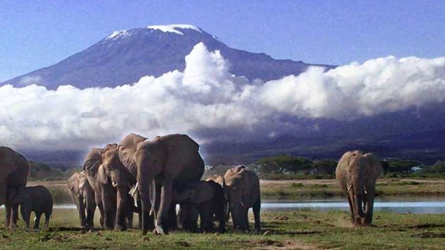 Travel From the Roof of Africa to its Beaches