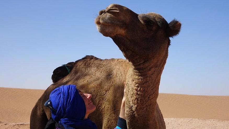 What is the Difference between Merzouga Desert & Zagora Desert?
