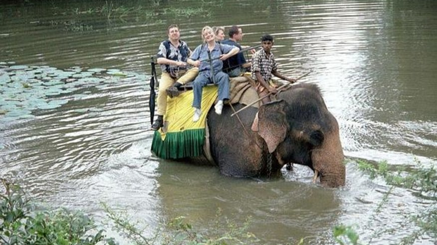 Tourists enjoying elephant ride in Minneriya National Park