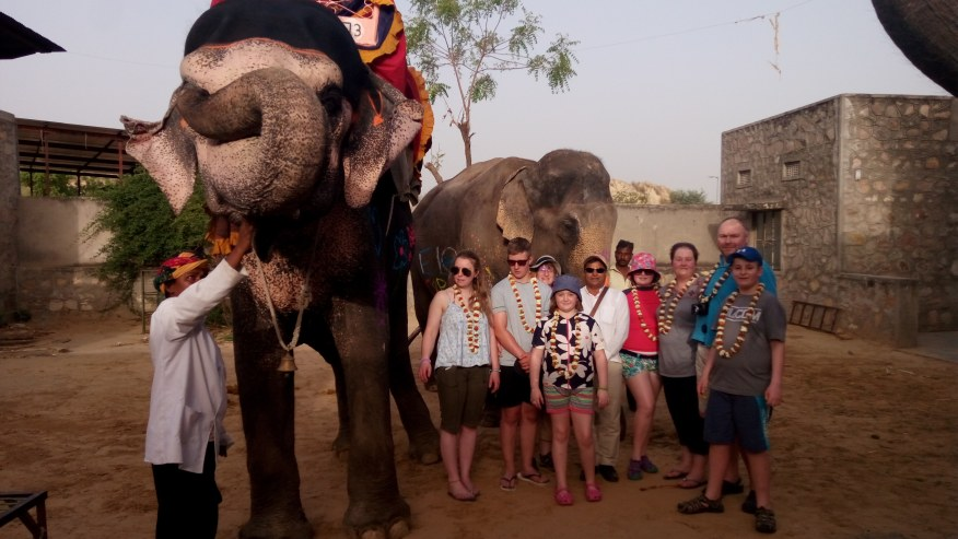Take This Elephant Village Tour in Pink City