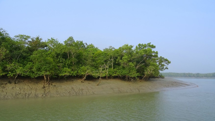 Explore the World Heritage Mangrove Forests in Bangladesh