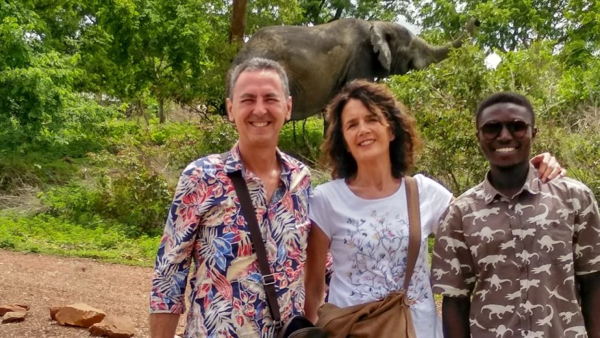 Encountering wild elephants