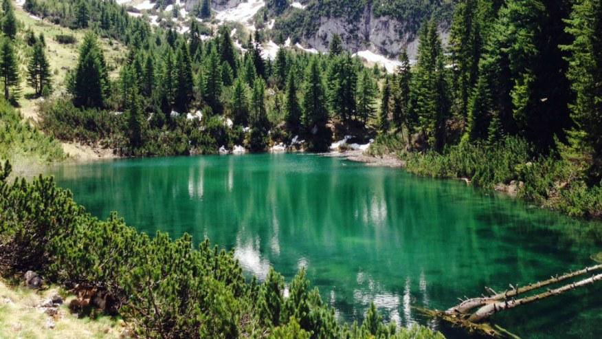 liqenat peje