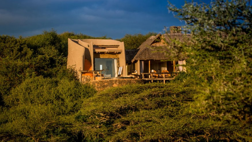 Delve deep into Kenyan wildlife explores