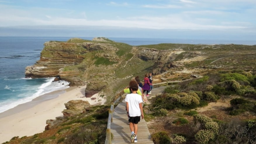 Boardwalk at Cape Point Nature Reserve