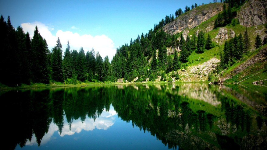 liqenati