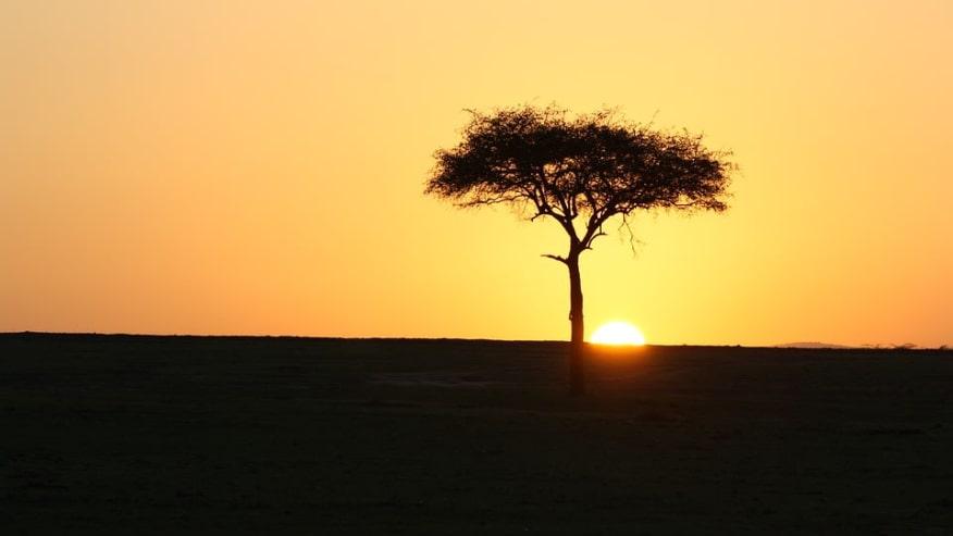 Sun setting on the edge of Masai Mara reserve
