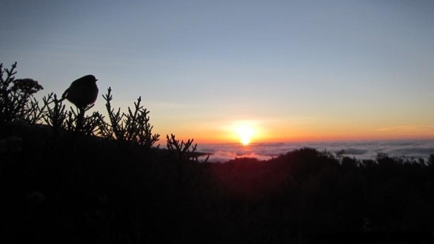 Sunset at Masai Mara Camp