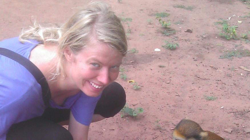 meeting monkeys