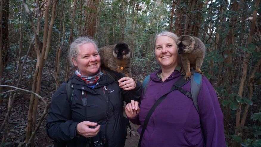 Tourists with Lemurs