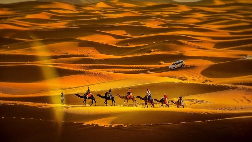Camel caravan ride