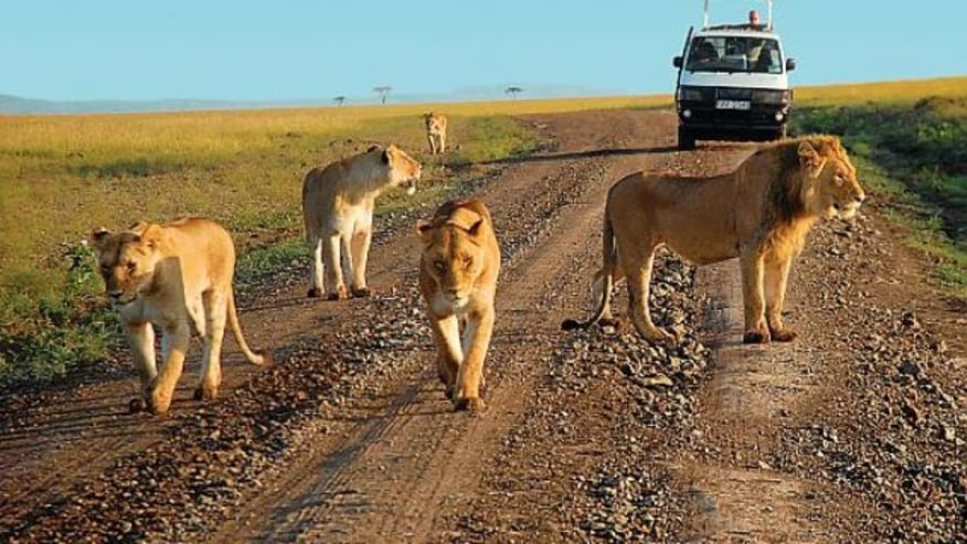 Check out this game park in Southern Kenya