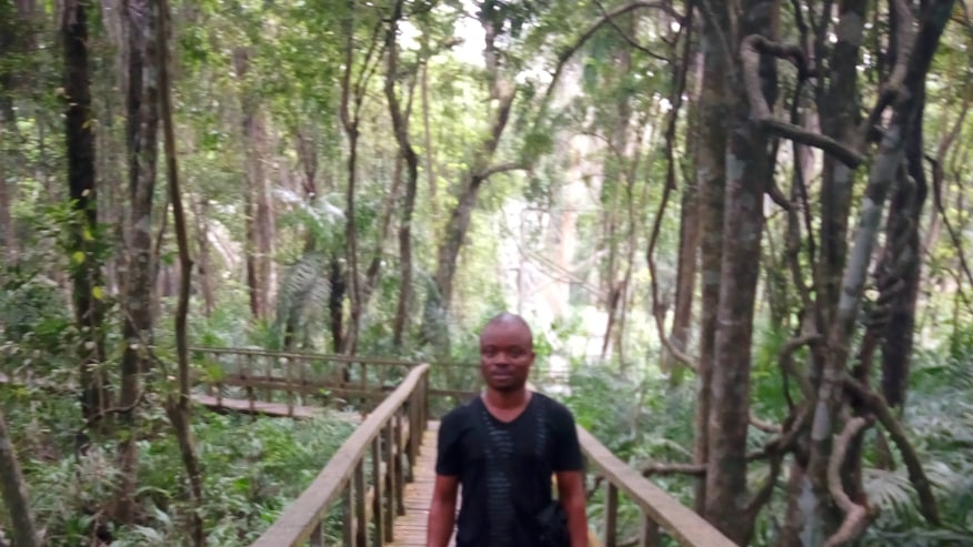 Crafting Exotic Tours to West Africa