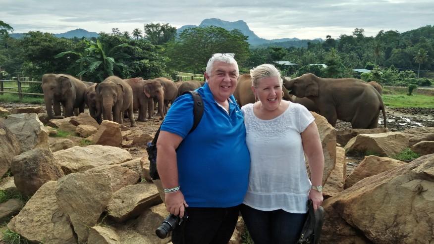 Elephant Orphanage-Pinnawala