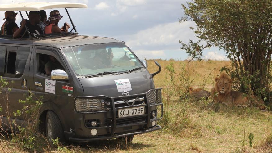 Join a group safari across the Masai Mara