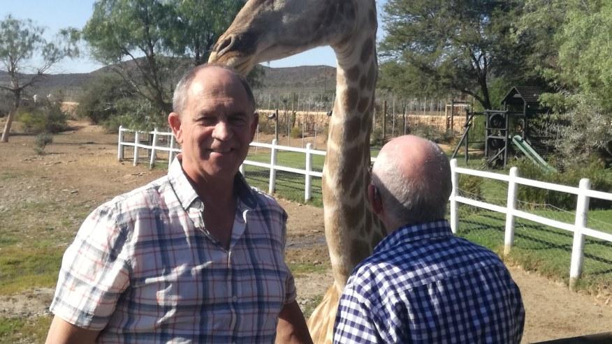 With the giraffe