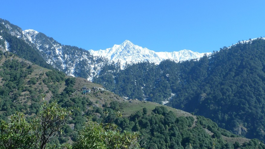 Take in the views of the Dhauladhar ranges