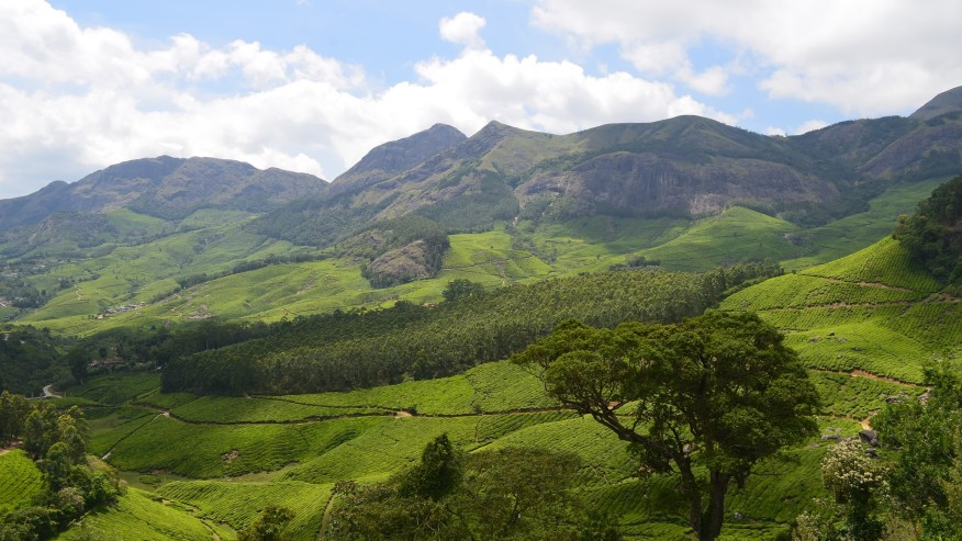 Hills of the Western Ghats.