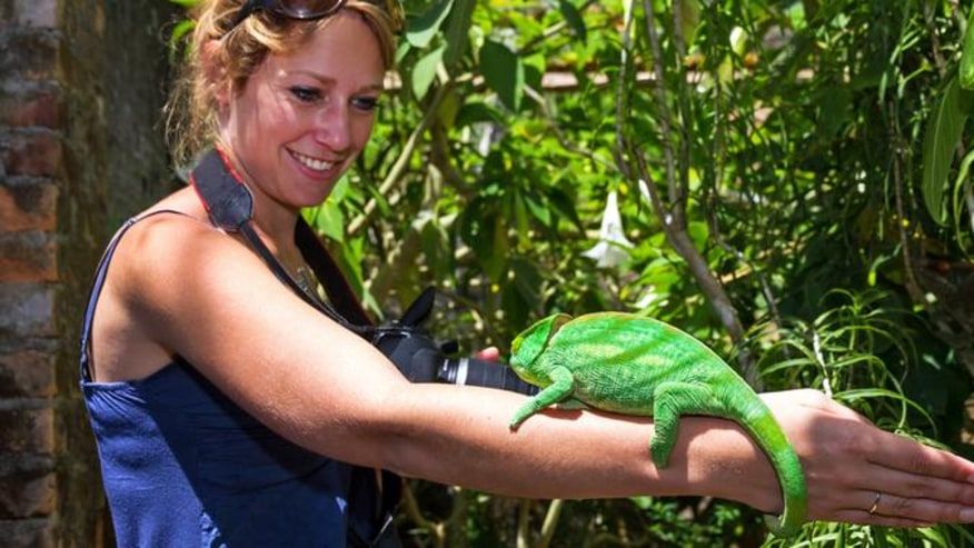 Tourist at National Park with chameleon