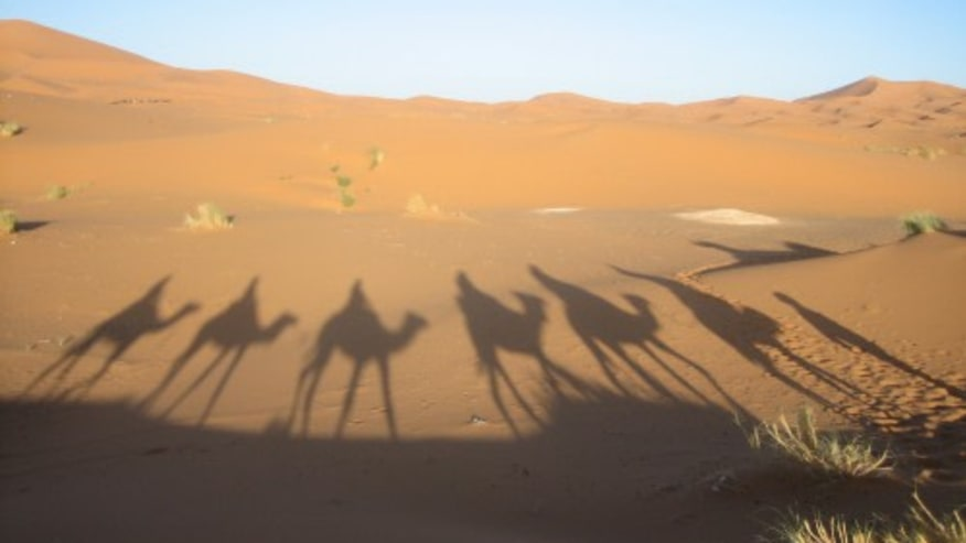Stare into Abyss of the Sahara Desert