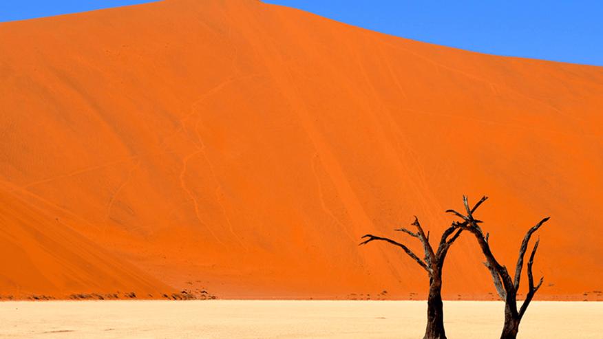 Sand dunes all around
