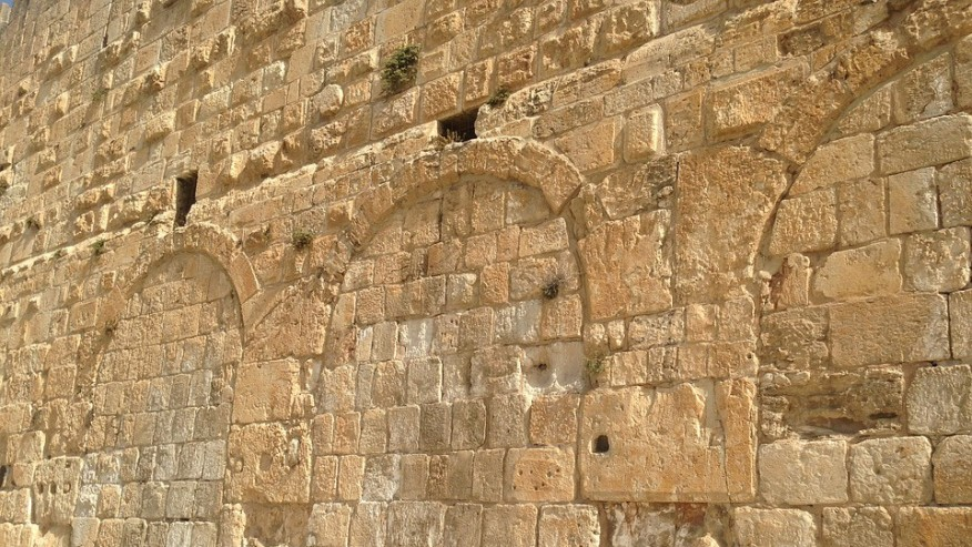 Enjoy the Historical and Natural Wonders of the Holy Land