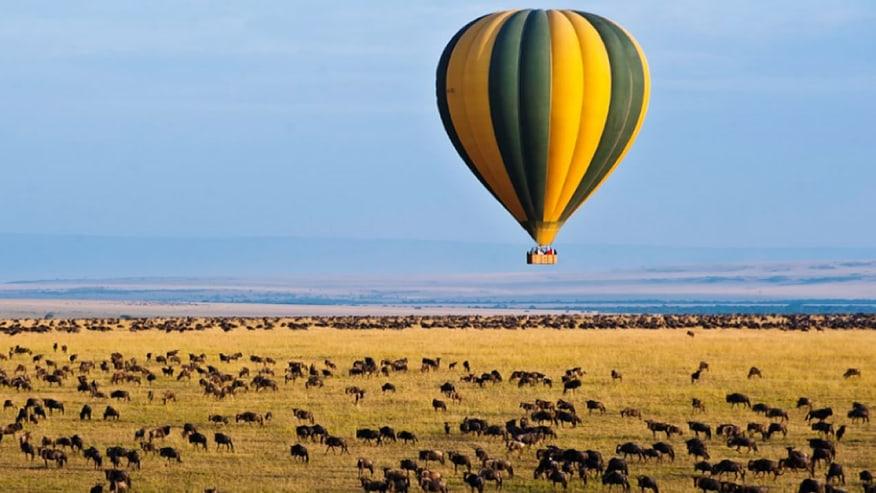 Set Up an Amazing Budget Safari Holiday